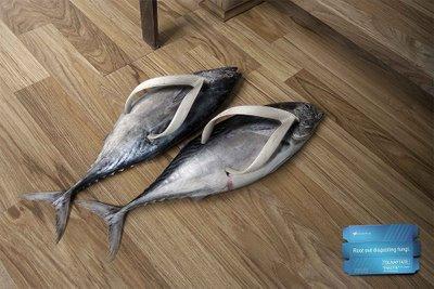 Zapatillas trucha