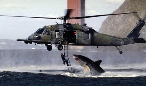 tiburon-helicoptero