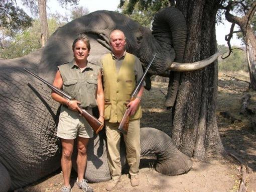 rey-elefante