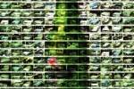 Más de 200 campañas «Si bebes… No conduzcas» ceslava 231