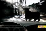 Más de 200 campañas «Si bebes… No conduzcas» ceslava 130