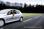 Más de 200 campañas «Si bebes… No conduzcas» ceslava 39