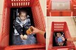 61 campañas contra el abuso y maltrato infantil ceslava 52