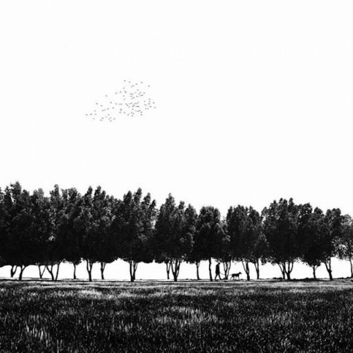 Hossein Zare-fotografia-surrealista-minimalista (16)