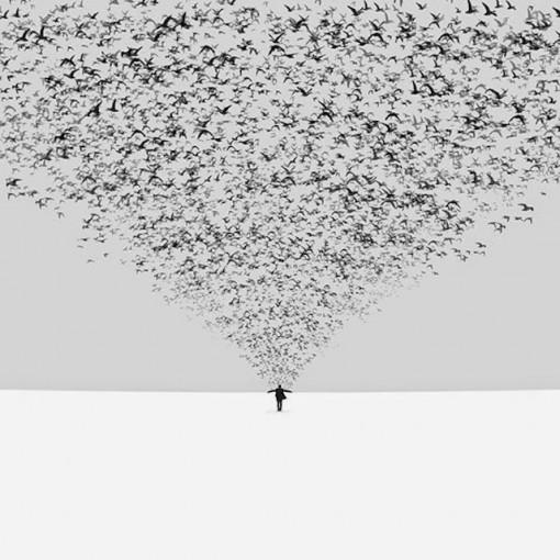 Hossein Zare-fotografia-surrealista-minimalista (17)