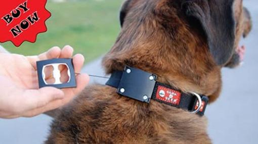collar-perros-abrebotellas