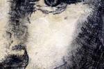Paul Smith, el artista con parálisis cerebral que pintaba con una máquina de escribir ceslava 21