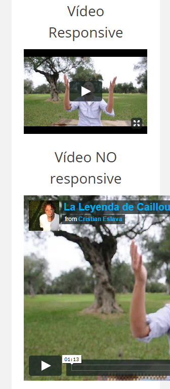 video-responsive-wordpress-tutorial-2