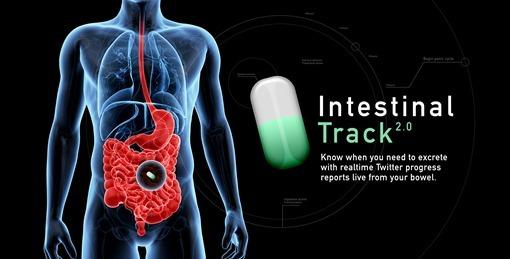 idea-intestinaltrack