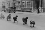 Fotografías de niños jugando a lo mismo en el S.XIX y ahora ceslava 17