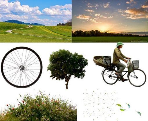 Anil Saxena-surrealista-photoshop-arbol-antes