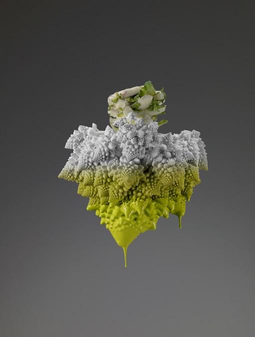 Colors, fotografías del desafío silencioso de la naturaleza Giorgo Cravero (4)