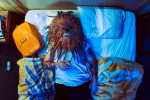 Tributo fotográfico a Chewbacca de La Guerra de las Galaxias en el MundoReal ceslava 24
