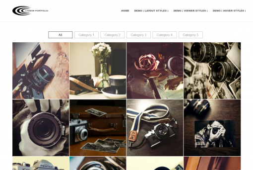 Wordpress Portfolio Plugin » Portfolio Gallery Layout