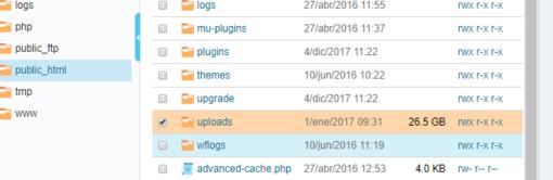 Cómo eliminar las imágenes inútiles de WordPress ceslava 3