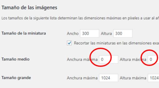 Cómo eliminar las imágenes inútiles de WordPress ceslava 12